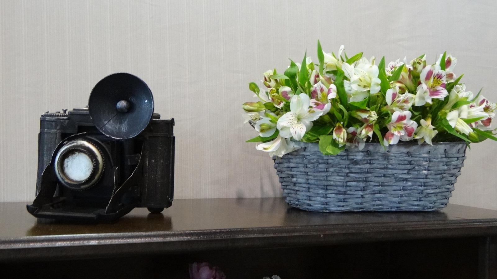 maq foto site